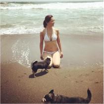 【エンタがビタミン♪】華原朋美、ビキニ姿でチワワと戯れる 浜辺ショットが「グラビアみたい」