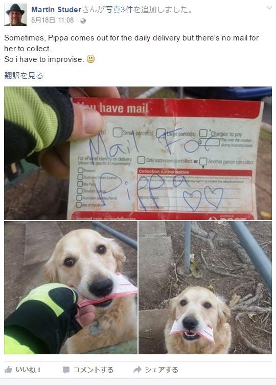 【海外発!Breaking News】郵便配達員からの手紙を心待ちにするワンちゃん(豪)