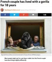 【海外発!Breaking News】18年間、ゴリラと家族のように暮らす夫婦(仏)