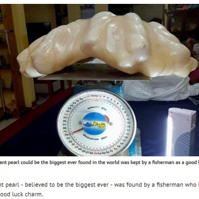 【海外発!Breaking News】世界最大の真珠がフィリピンで発見される その価値100億円!