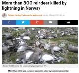 【海外発!Breaking News】ノルウェー南部の台地にトナカイ323頭の死骸 激しい落雷で