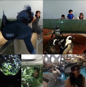 ペンギンなども楽しんだ相武紗季(出典:https://www.instagram.com/aibu_saki)