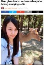 【海外発!Breaking News】観光客の自撮りにうんざりする鹿 「鹿の本音が表れている」と話題に