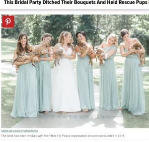 【海外発!Breaking News】ブーケの代わりに仔犬を抱いた花嫁 キュートなウエディング写真にほっこり(米)
