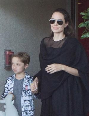 【イタすぎるセレブ達】ブラピと離婚申請のアンジェリーナ・ジョリー 6人の子とセラピー開始