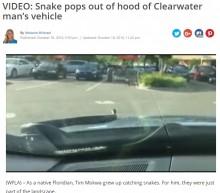 【海外発!Breaking News】高速を運転中の男性仰天 ボンネットとフロントガラスの隙間から大蛇が!(米)