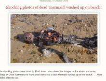 【海外発!Breaking News】英・東海岸に「人魚」の死体 発見者による自作自演のホラー作品か