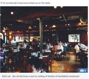 【海外発!Breaking News】天井から降ってきたネズミ 女性客の頭を直撃 高級レストランで(英)