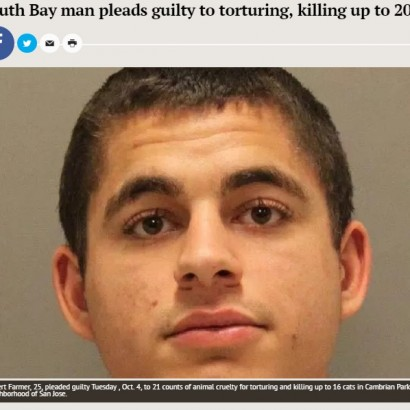 【海外発!Breaking News】父親は元警察署長 20匹超のネコを性的虐待死させた男(米)