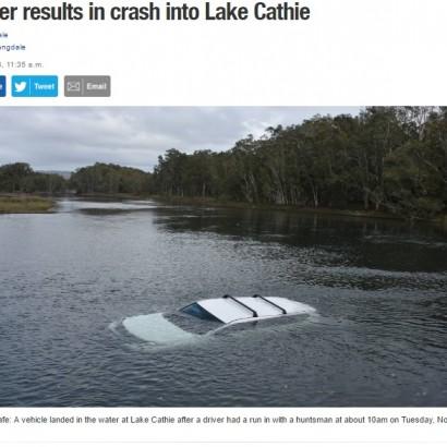 【海外発!Breaking News】腕に小さなクモ クモ恐怖症の男性、パニックに陥り車ごと湖に落下(豪)