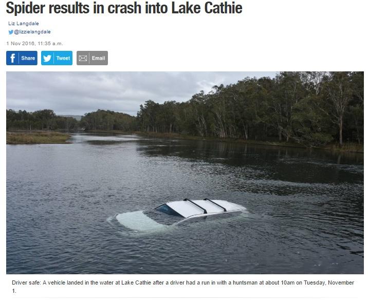 たった1匹のクモが原因で車が湖に! (出典:http://www.portnews.com.au)