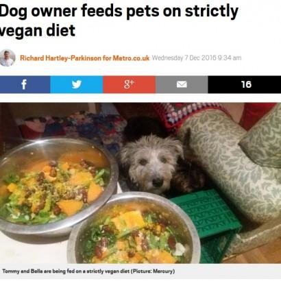 【海外発!Breaking News】ペット犬に徹底したヴィーガン生活をさせる飼い主(英)