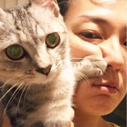 """【エンタがビタミン♪】板谷由夏""""猫パンチ""""で顔ゆがむ まさかの癒しショットに「その顔は出しちゃダメ」"""
