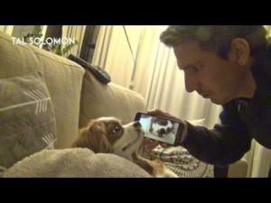 【海外発!Breaking News】自分のいびきを聞かされた犬の反応が面白すぎる!(イスラエル)<動画あり>