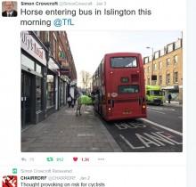 """【海外発!Breaking News】ロンドン名物ダブルデッカーに""""珍客"""" 馬が乗車を試みる?"""