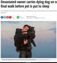 【海外発!Breaking News】安楽死前の愛犬と最後の散歩 悲しみをこらえ大好きだった場所へ(北アイルランド)