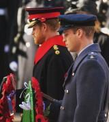 【イタすぎるセレブ達】英ウィリアム王子「母ダイアナの死に、怒りを感じた」 家族を亡くした子供達との交流で