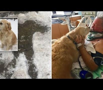【海外発!Breaking News】雪の中動けなくなった飼い主 愛犬の必死の鳴き声が命を救う(米)<動画あり>