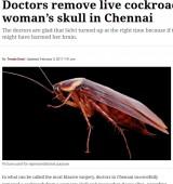 【海外発!Breaking News】女性の頭部から生きたゴキブリが! 死んでいたら脳にダメージも…(印)