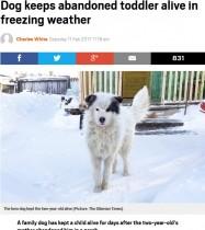 氷点下20度の中、置き去りにされた2歳男児を飼い犬が2日間温め続ける(露)