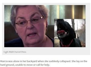 【海外発!Breaking News】脳卒中により庭で倒れた女性 隣家のペット犬が危機を察し命を救う(米)