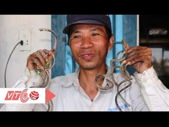 35年間爪を切っていないというベトナムの男性(出典:https://www.youtube.com)