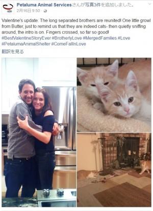 【海外発!Breaking News】デートアプリで知り合ったカップルの奇跡 お互いの飼い猫がきょうだいだった(米)