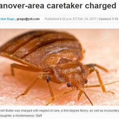 【海外発!Breaking News】全身50%以上をトコジラミ(南京虫)に噛まれた96歳 合併症で死亡(米)