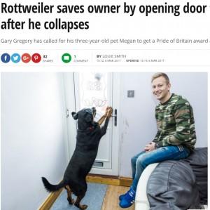 【海外発!Breaking News】911通報後に意識を失った男性 ペット犬が玄関の鍵を開け、救急隊を家の中に(英)