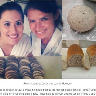 【海外発!Breaking News】タンパク質が大幅にアップ! ブラジルの大学生、ゴキブリ入りのパンを開発