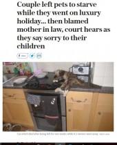 【海外発!Breaking News】ペットを放置して旅行へ 餓死させた夫婦、今後12年間動物の飼育を禁じられる(英)<画像閲覧注意>
