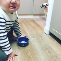 【エンタがビタミン♪】浜島直子 2歳長男と愛犬のほっこりショットに反響 叱られる彼を心配そうに見つめる