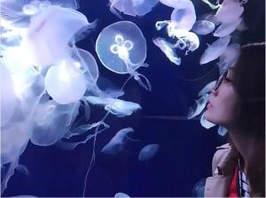 【エンタがビタミン♪】大島優子、クラゲに見入るめがね姿が幻想的 峯岸みなみと水族館デート