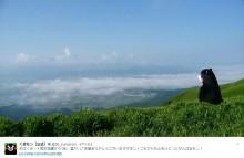 【エンタがビタミン♪】くまモン「心をひとつにがんばるモン!」 熊本を見守る姿に応援ツイート続々