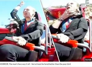 【海外発!Breaking News】欧最速ジェットコースターで男性客にハトが激突(スペイン)