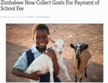 【海外発!Breaking News】授業料を払えない親、政府が家畜や奉仕活動での支払いを容認(ジンバブエ)