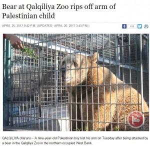 【海外発!Breaking News】遠足で動物園に来た9歳少年、クマに腕を食べられる(パレスチナ)