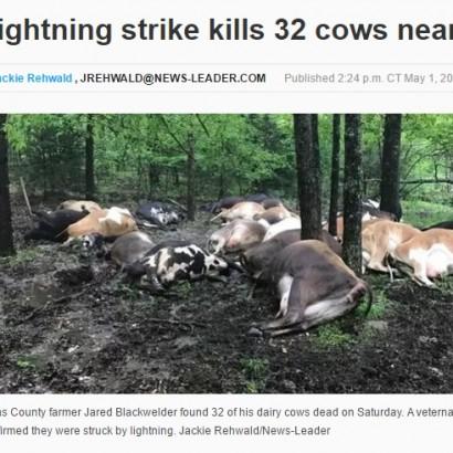 【海外発!Breaking News】一瞬の落雷により乳牛32頭が即死 米オーガニック認定牧場で
