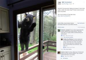 【海外発!Breaking News】ブラウニーの匂いにつられて? クマが家に侵入を試みる(米)