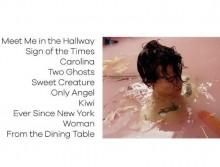 【イタすぎるセレブ達】ハリー・スタイルズの楽曲にファン騒然 「テイラー・スウィフトをネタに?」