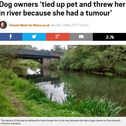 【海外発!Breaking News】「病気だから」とペット犬を川に投げ捨てた飼い主(英)
