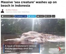 【海外発!Breaking News】インドネシア・セラム島で体長15m謎の生物を発見<動画あり>