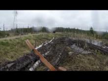 【海外発!Breaking News】熊に襲われるハンターの一部始終を捉えた映像に冷や汗(カナダ)<動画あり>
