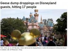 【海外発!Breaking News】米ディズニーランドで大きな悲鳴 群れなして飛ぶ雁の糞が降り注ぐ!