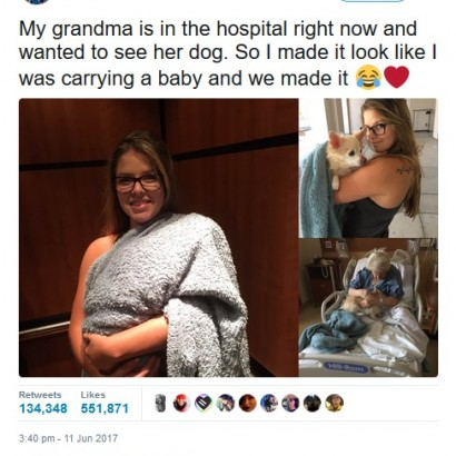 【海外発!Breaking News】入院中の祖母を「元気づけたい」 孫が愛犬を持ち込む(米)