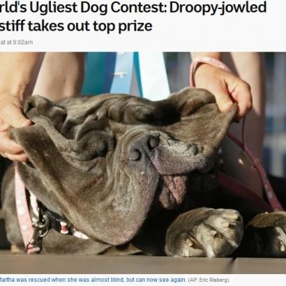 【海外発!Breaking News】「世界一醜い犬コンテスト」で3歳のマスティフ犬が優勝(米)