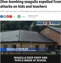 【海外発!Breaking News】まるでヒッチコック映画 カモメの群れが児童や教師を頭上から襲撃(英)