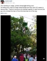 【海外発!Breaking News】米・遊園地アトラクションから少女が転落 しかし来場者ら見事にキャッチ