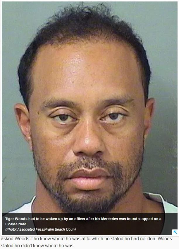 疲れた表情も話題になったタイガー・ウッズ(画像は『USA TODAY 2017年5月30日付「Tiger Woods had to be woken up by police before DUI arrest」(Photo:Associated Press/Palm Beach County Sheriff's Office)』のスクリーンショット)