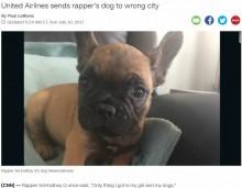 【海外発!Breaking News】ユナイテッド航空、今度は仔犬を違う便で別空港へ 「本当にメチャクチャだな」呆れる声(米)